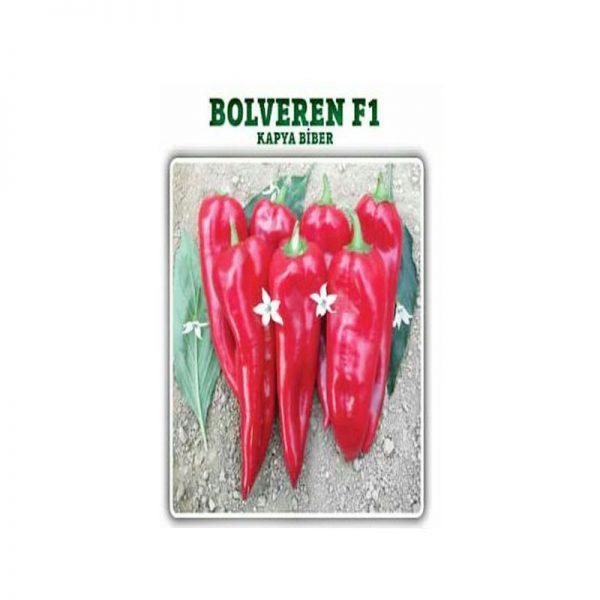 بذر فلفل قرمز AZ - سناپالیز
