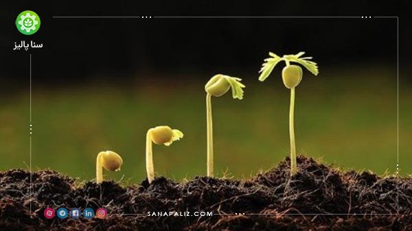 مکمل های رشد و ریشه زا